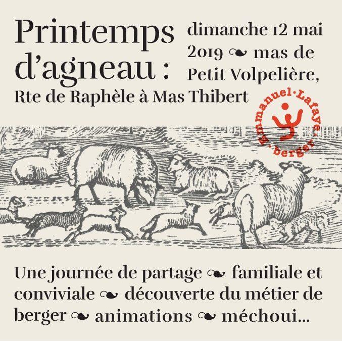 Printemps d'Agneau  #2